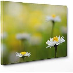 ConKrea Cuadro Sobre Lienzo Canvas Listo para Colgar–Flores–Margaritas Blancas Colores–Natura Panorama Paisaje–Campo Flores Bouquet