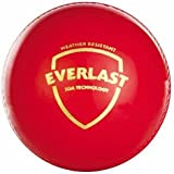 SG Everlast Ball