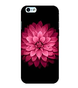 For Apple iPhone 6S red flower, flower, pink flower, black background Designer Printed High Quality Smooth Matte Protective Mobile Case Back Pouch Cover by APEX ELEGANT