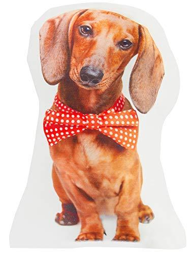 The Paragon Doxie Hundekissen in Form eines Hundes - geformtes Kissen, lustiges Dackel-Hundekissen für Zuhause oder Büro, realistisches Dekokissen Paragon Form