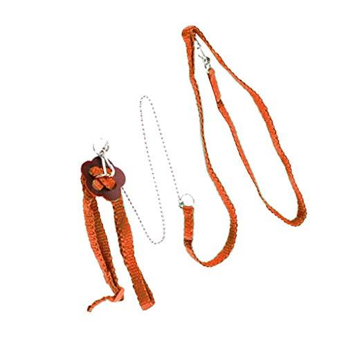 Meisijia Einstellbare Kriechtier Echse Gurt Leine Durable Multicolor Pet weiches Seil Brustgurt Outdoor Accessoires -
