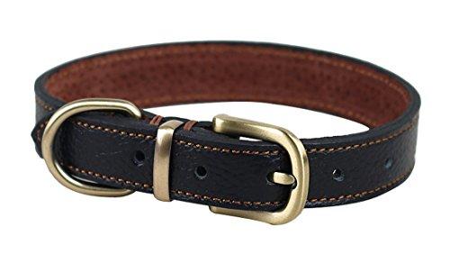 pentaq Soft verstellbar Leder Hunde Halsband und Set stark für kleine medium Hunde Verstellbare Halsumfang 33cm-39cm und 2cm breit, Welpen und Katzen ideal für Walking Training Langlebig Sicher Head Halsband (Medium Aus Leder Hundehalsband)