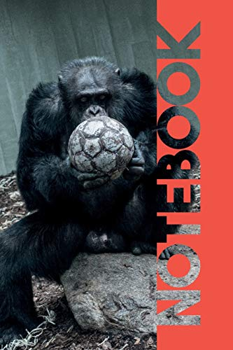 Notebook: Football Equipment Terrific Composition Book for Orangutan Footie Coach