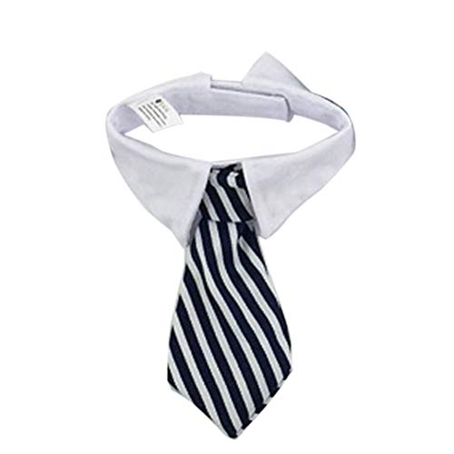 EROSPA® Hunde-Halsband Krawatte mit Kragen - Halsbinde/Schlips (Schwarz/Weiß)