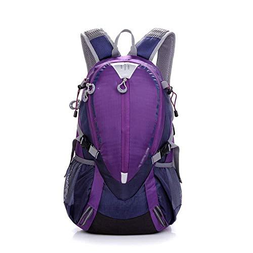 LZRDZSW Sac à dos de voyage spacieux à dos à dos, sac à dos matelassé en molleton, sac d'alpinisme en plein air sac à dos Oxford en tissu sac à dos grand sac à dos de randonnée sac à dos sportif homme