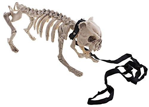 Das Kostümland Gruseliger Skelett Hund mit Leine - Echt wirkende Halloween Dekoration eines kleinen Hundes