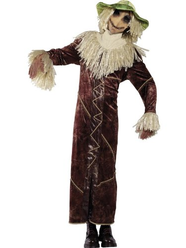 Fancy Dress Rebel Toons-Kostüm Vogelscheuche