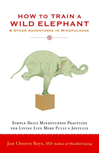How To Train A Wild Elephant: And Other Adventures in Mindfulness por Jan Chozen Bays