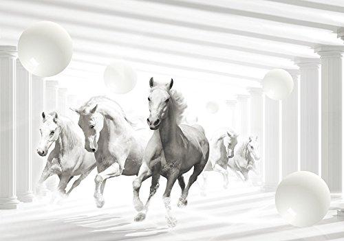 DekoShop Fototapete Vlies Tapete Moderne Wanddeko Wandtapete Abstrakte Pferde AMD10154VEXXL VEXXL (312cm. x 219cm.) Tiere/Fauna,Abstraktion und Kunst