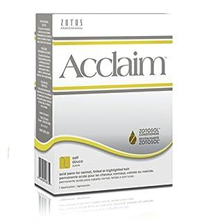 Acclaim Acid Regular Hair Perm Kit