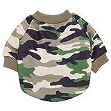 Hawkimin Haustier Kleiner Hund Katze T-Shirt, Heiße Nette Kleider Hündchen Kleidung Sweatshirt Lässig Weste Mantel