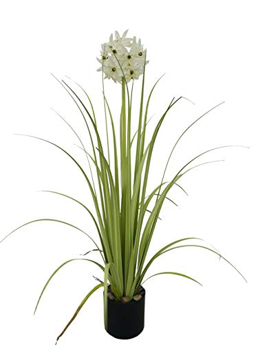Kunstpflanze Allium Gras, Grüner Topfpflanzen mit schwarzem Topf, 71 cm 28