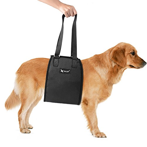 Glitz Star Einstellbar Hundegeschirr Tragehilfe Rehabilitation Unterstützung mit Griff für Hunde-Hilfe Hunde Verletzungen (L, Schwarz)