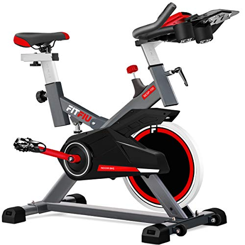 Fitfiu - BESP100 Silent+  Bicicleta spinning indoor con volante de inercia de 16kg, cuadro de acero...