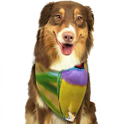 ch Fashion Dog Bandana Pet Accessories Easy Wash Scarf ()