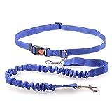Hundeleine, Die Haustier-Leine Für Das Bungee-Gehen Laufen Lässt, Reflektierende Hundeleine Aus Nylon (Farbe : Blau)