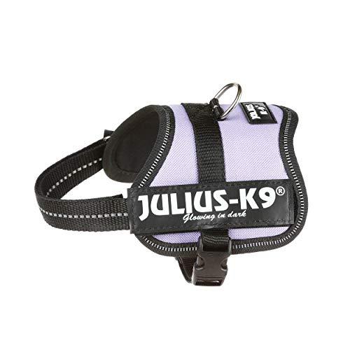 Julius-K9, 162PR-BB2, K9-Powergeschirr, Größe: Baby 2, -