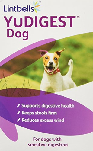 Lintbells YuDIGEST Dog Digestive Health Supplement for dogs prone to tummy troubles (60 tablets)