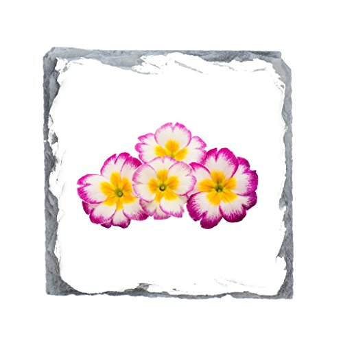 Rose Garden Bar Table (Primrose Bild Schiefer Getränke Untersetzer)