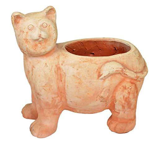 Unbekannt Katze Auf Seine 4Pasta (Topf)