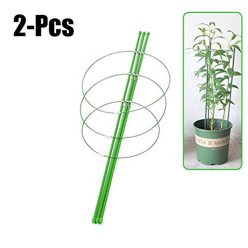 Fansport 2pcs 17.72 '' supporto per piante rampicanti