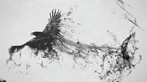 FRAMED Abstract Raven Canvas Wall Art Decoration | Norse Art, Pagan Canvas, Viking Canvas, Wild life art | High Quality Printing, Internal Genuine Wooden Frame, 3D Effect