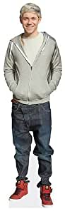 Niall Horan Life Size Cardboard Cutout Real Stand Up Merchandise One Direction, Free UK Delivery