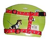 TOP STAR. HROU Hundegeschirr, Nylon, Knochen und Pfoten, 20 mm x 35 x 50 cm, sehr robust und leicht, 80 g