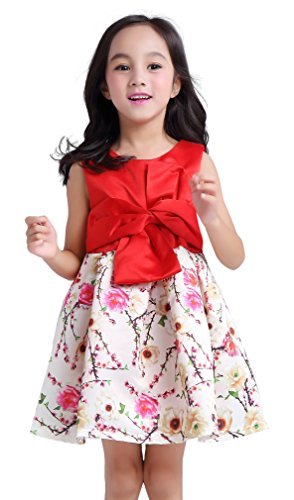 newill-girls abiti matrimonio Bridsmaid Pageant partito vestito per bambini senza maniche estate sundrees età 2 3 4 5 6 7 anni (Costumi Birthday Party Dress)