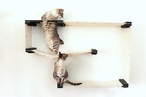 Catastrophicreations cat mod maze–multiple-level gatto amaca & climbing activity center–albero mensole a parete artigianale: gatto