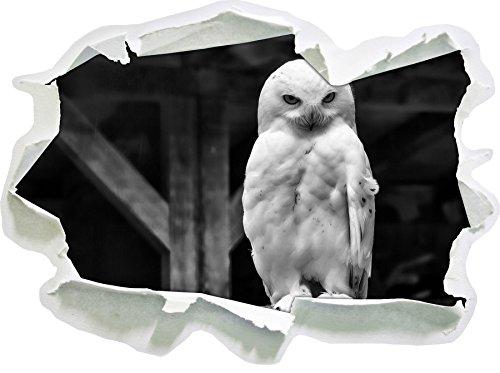 Stil.Zeit Monocrome, Weiße Schneeeule Papier im 3D-Look, Wand- oder Türaufkleber Format: 62x45cm, Wandsticker, Wandtattoo, Wanddekoration