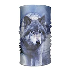 Wolf Unisex Beautiful Variety Scarf Head Scarf Scarves Face Masks Headband Cap Headwear Bandanas Sport Head Scarf by Liuzhis