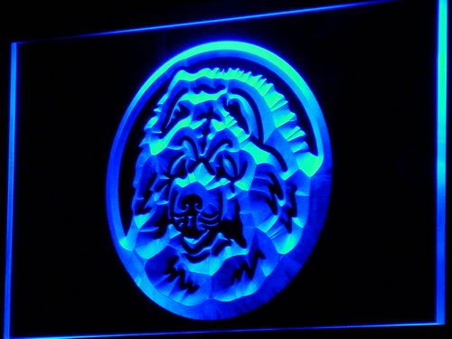 insegna-al-neon-i662-b-chow-chow-dog-breeders-pet-shop-neon-light-sign