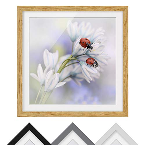 Bilderwelten Póster Enmarcado - Ladybugs Couple -
