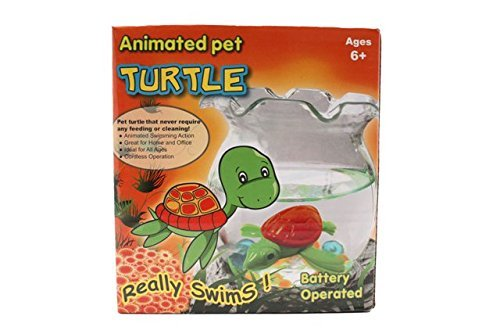 Cute Pet Turtle, Aquarium Bowl -