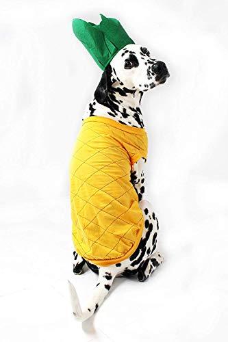 Kostüm Für Hunde Ananas - Midlee Ananas Hund Kostüm, XX-Large