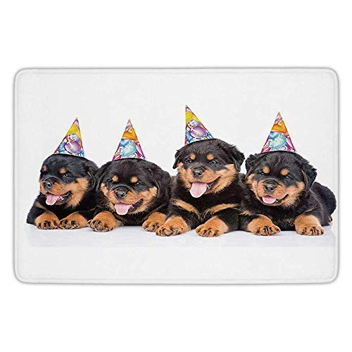 DFSDFSASDF Bathroom Bath Rug Kitchen Floor Mat Carpet,Birthday Decorations for Kids,Rottweiler Puppies with Party Cone Hats Art Print,Black and Marigold,Flannel Microfiber Non-Slip Soft Absorbent (Party Birthday Hüte Black)