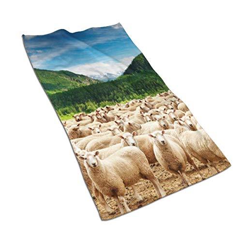 N/A Asciugamano Morbido per Le Mani Motivo mandria di Pecore capre al Piede di baffa per casa Spiaggia Yoga 698 x 445