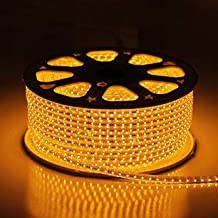 Errol LED Strip Rope Light,Water Proof,Decorative led Light with Adapter. (Warm white (Yellow), 5 Meter)