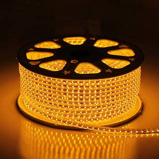 Errol LED Strip Rope Light,Water Proof,Decorative led Light with Adapter. (Warmwhite(Yellow), 5 Meter)