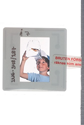slides-photo-of-a-little-boy-is-watching-to-a-goldfish-in-a-poly-bag
