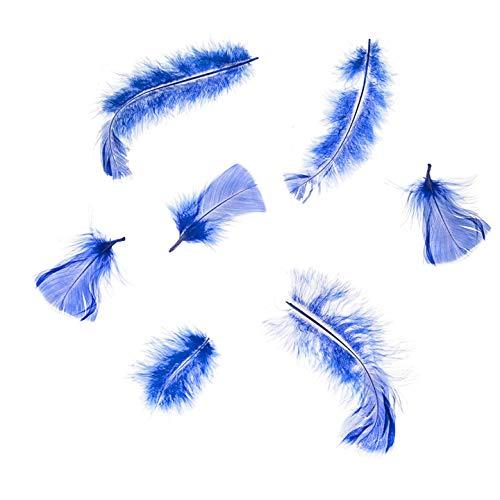 Darice Bulk kaufen Bulk Darice DIY Crafts All Purpose Federn 14Gramm 6Pack royal blau -