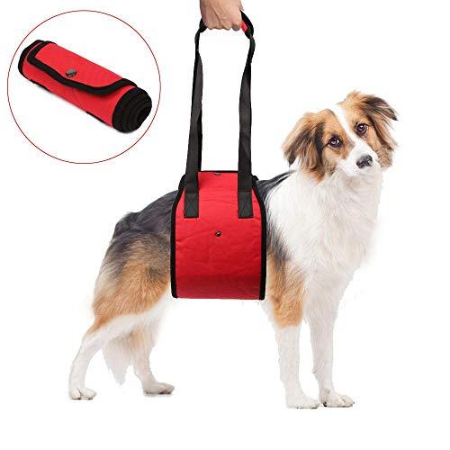 Funkeen Harnais de portage ou de rééducation pour chien