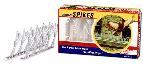 Bird x 0706069158910 Nib 12 Pack Inc Sp 10 Nr Plastic Bird