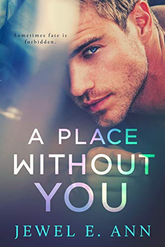 A Place Without you by [Ann, Jewel E]
