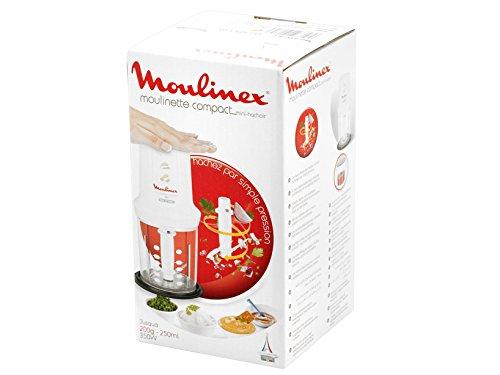 Moulinex DJ3051 frullatore