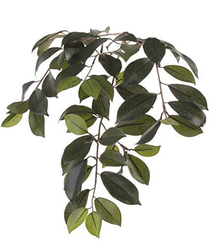 artplants Set 24 x Künstlicher Ficus Microcarpa Zweig BHAO, 65 cm – 24 Stück Künstliche Blätter/Kunstblatt Ficus