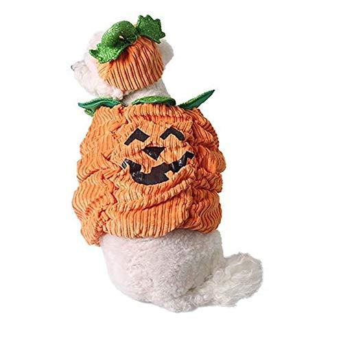 Coppthinktu Halloween-Kürbis-Kostüm für Hunde und Katzen, warmes Outfit, Fleece-Kapuzenpullover, Large, Mehrfarbig