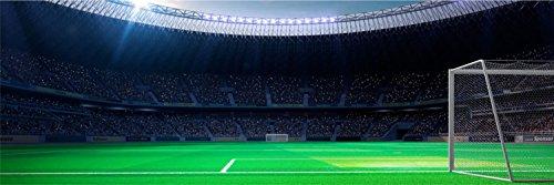 Stadion Fußball Tor Rasen XXL Panorama Wandtattoo Bild Poster Aufkleber W0030 Größe 200 cm x 66 cm -