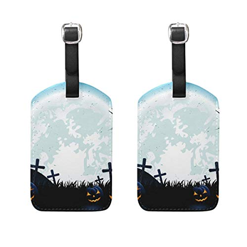ggage Tags 2 Pieces Set Travel ID Bag Tag for Suitcase ()